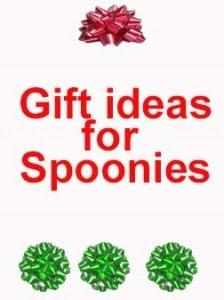 Spoonie gift ideas